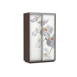 Шкаф-купе платяной Хит Фото Орхидея венге