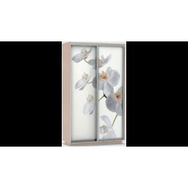 Шкаф-купе Хит Фото Орхидея дуб молочный